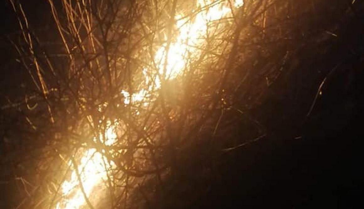 11# Pożar suchej trawy